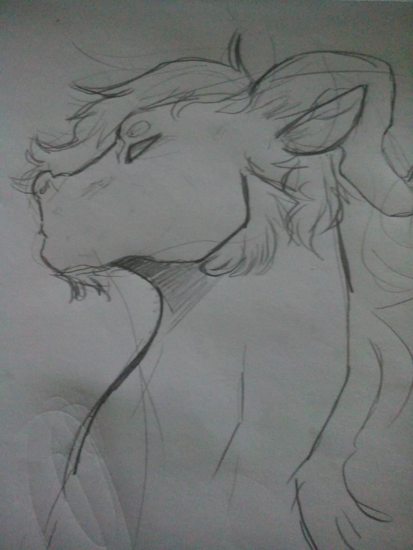 random dragon doodle by Minus-Eleven