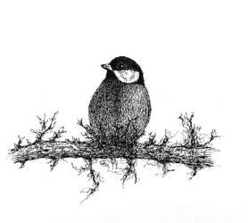 Bird (micron pen)