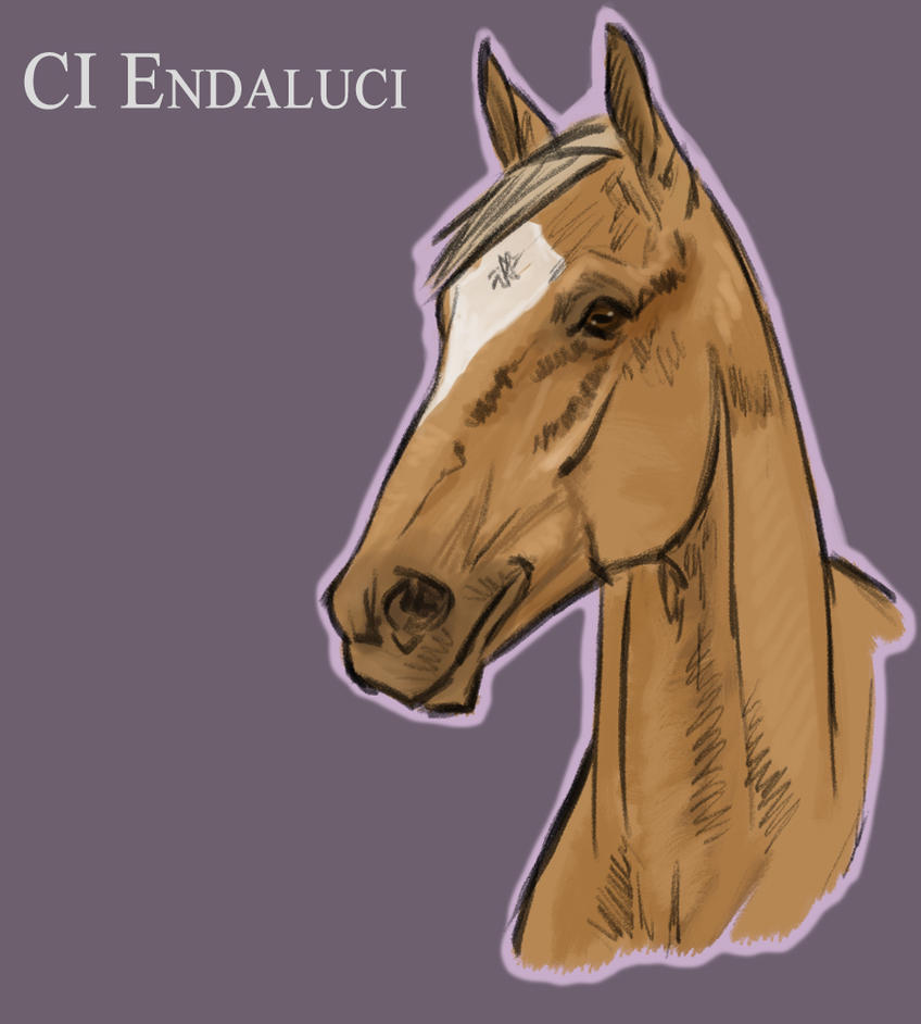 CI Endaluci by Geronimo24