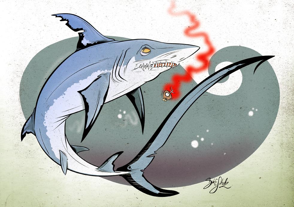 Shark 14 - Pelagic Thresher by Themrock