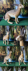 Needle felted Hare by Finya-Vardeen
