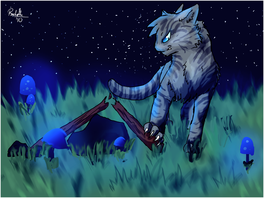 the best warriors jayfeather pictures ftw d