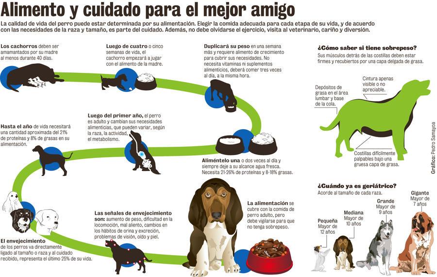 Alimentacion de los Perros by TetsuyaKenshi