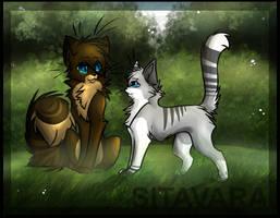 Hawk x Ivy by Sitavara