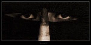 The eyes with the spoken voice