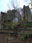 Ruins at Springton 2