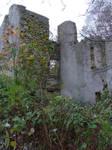 Ruins at Springton 3