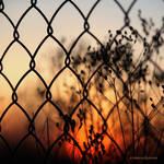 boundaries blur when the night falls