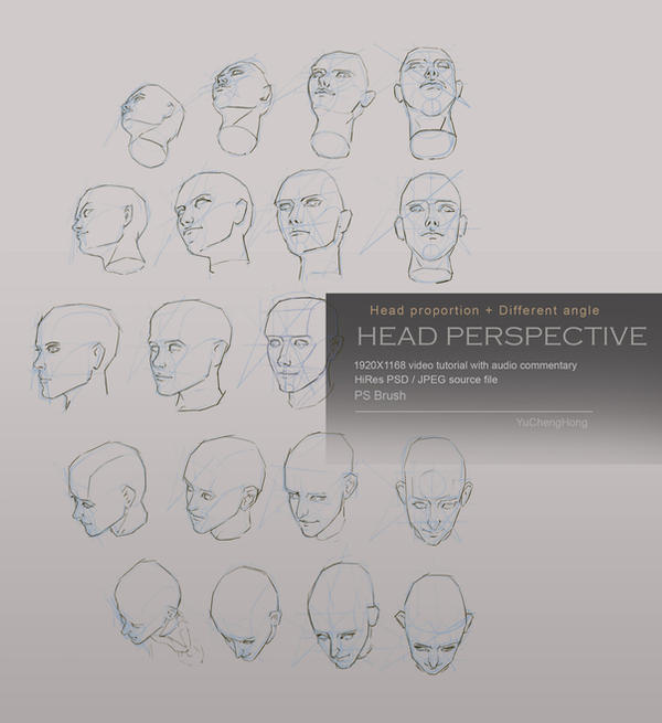 Head perspective tutorial
