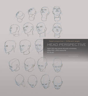 Head perspective tutorial