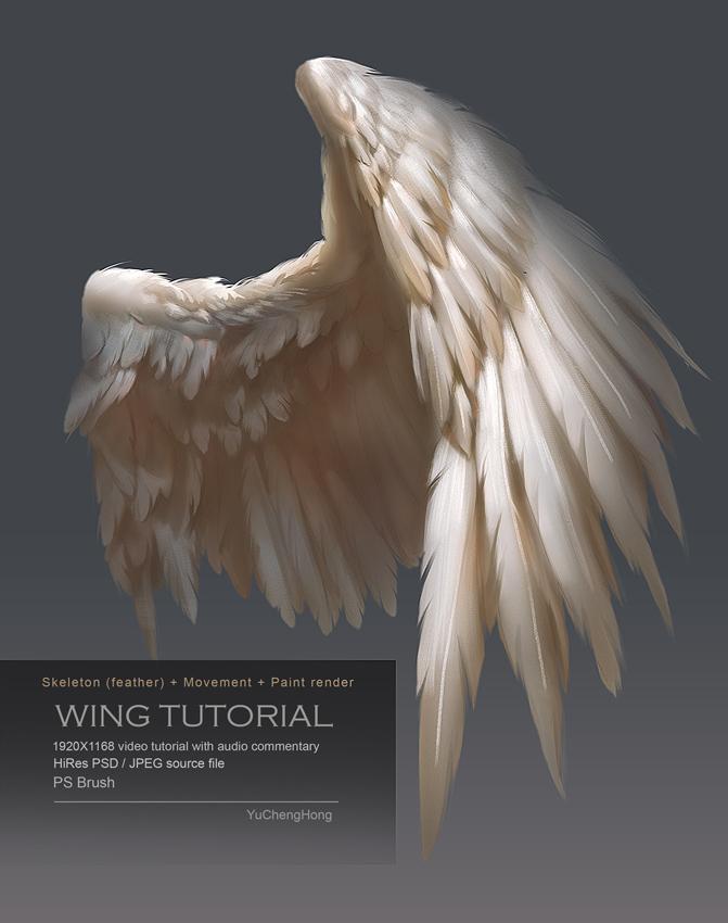 Wing Tutorial by yuchenghong