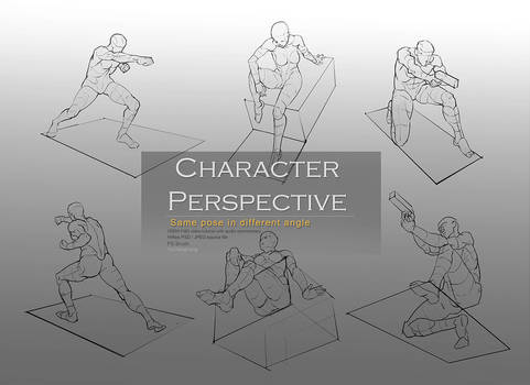 Character Perpective