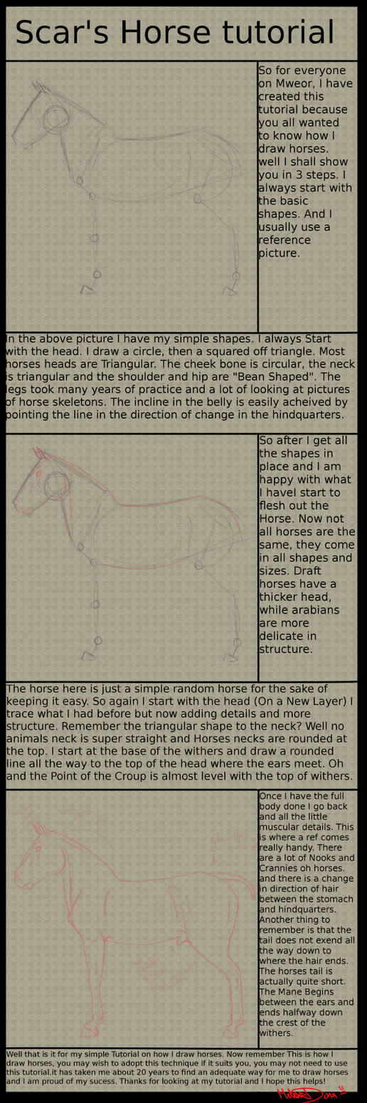 Horse Tutorial by Jupiter-Foxclaw