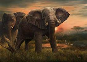 Facing the Giant by denismayerjr