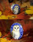 Commission:barn owl silver box