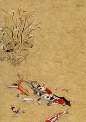 Koi study by Heliocyan