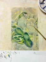 Parrots in progress by Heliocyan