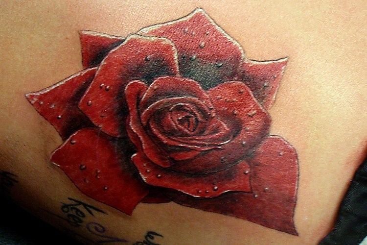 Rose Tattoo by BodyArtbyElf