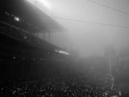 The Foggy Confines