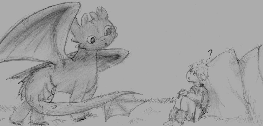 Toothless and Hiccup by pokefan444