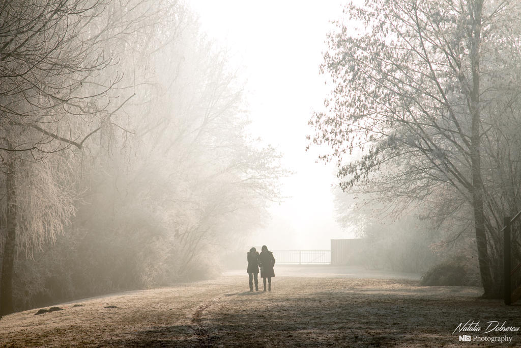 Foggy winter morning by mydarkeyes