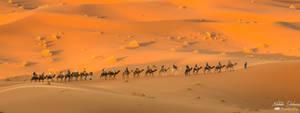 Sahara Desert - Morocco by mydarkeyes