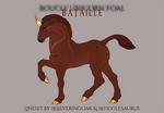 V107 Boucle Foal