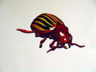 Color blending with paint pens??? Buggy_bug_by_darkdeli