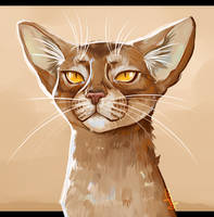 Abyssinian Cat Painting