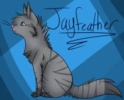 Jayfeather by Sillycandy