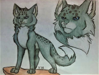Wolfstar by lotrfanforlife