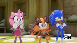 Sonic, Sticks, and Amy