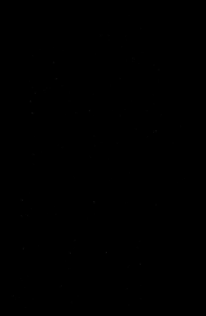 определение бандана со знаком конохи