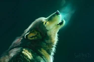 [portrait#3] wolf by SofiMXD