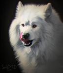 [portrait#16]