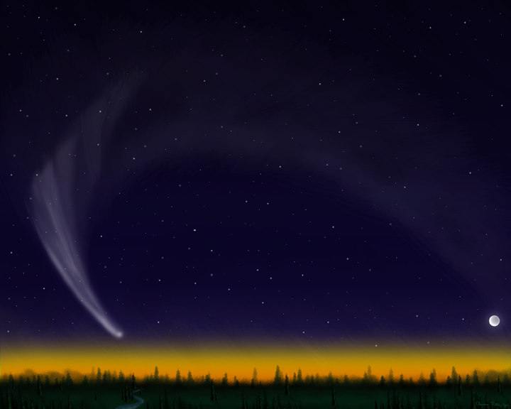 Great Night Sky Forest by stargateatl
