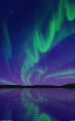 Transcending Skies