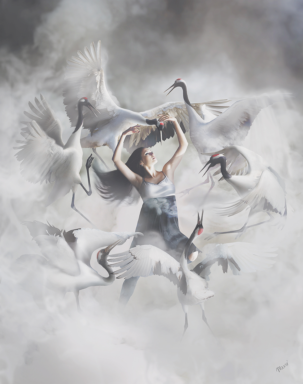 Dancing cranes by Katie-Watersell