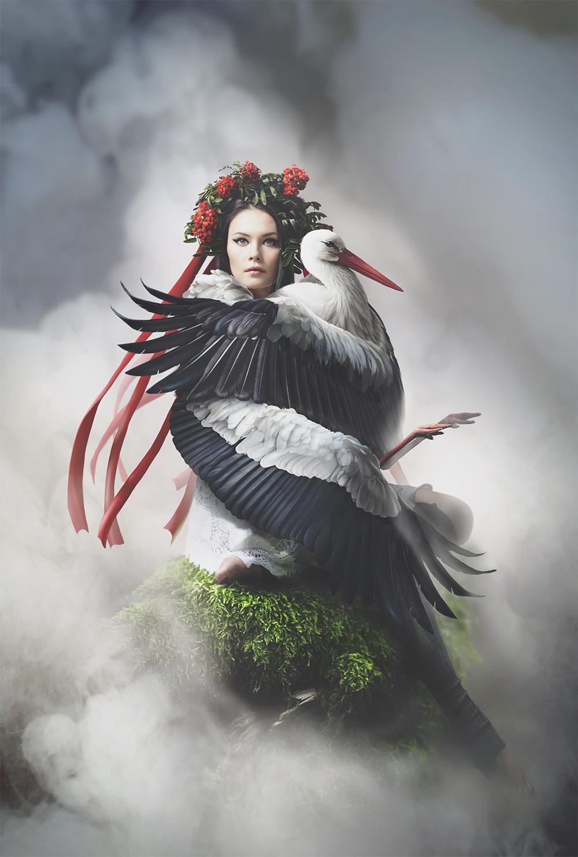 Storks by kidy-kat