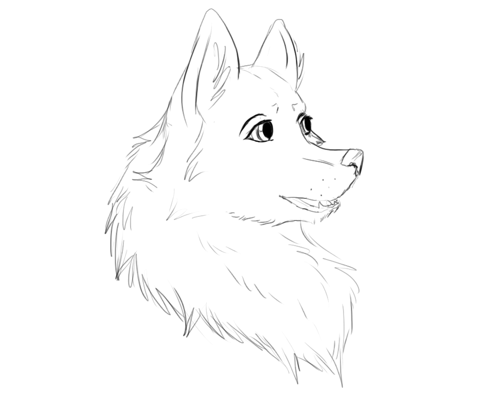 how to draw wolf hair