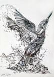 King Fisher Biro Pen Sketch