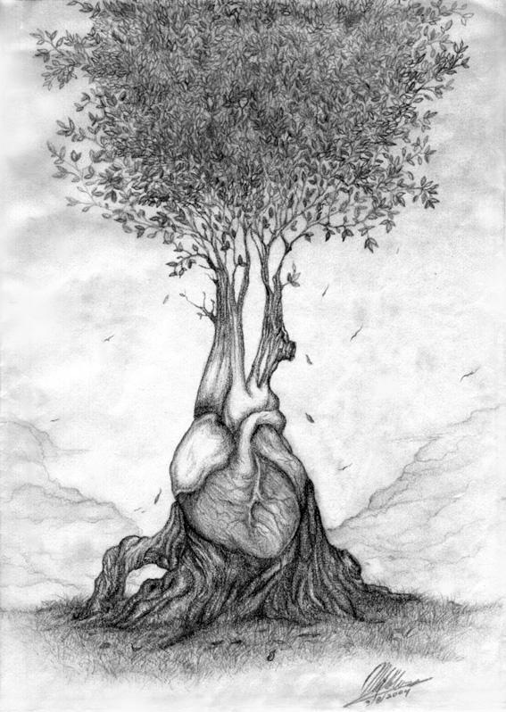 Human Heart by erlondeiel