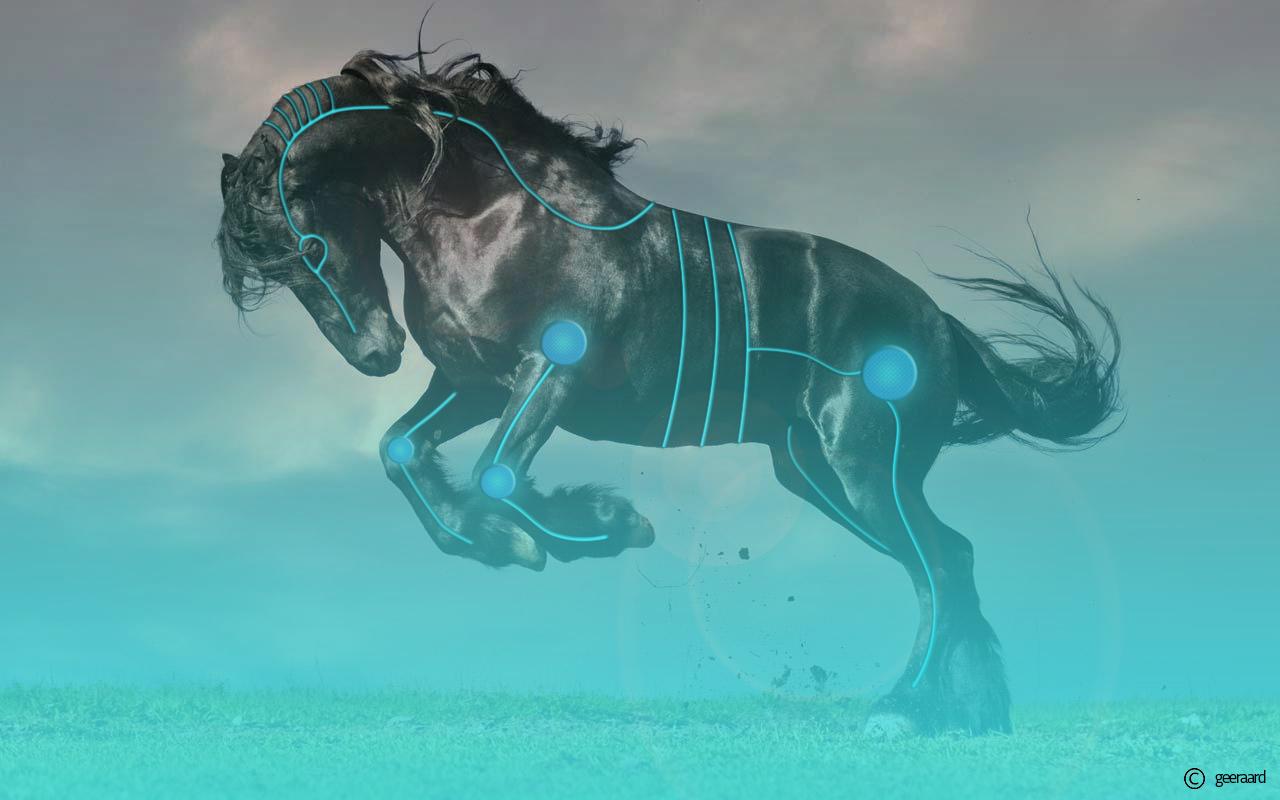 Deviantarts Robot Horse: Futuristic Horse-Robot By Geeraard On DeviantArt
