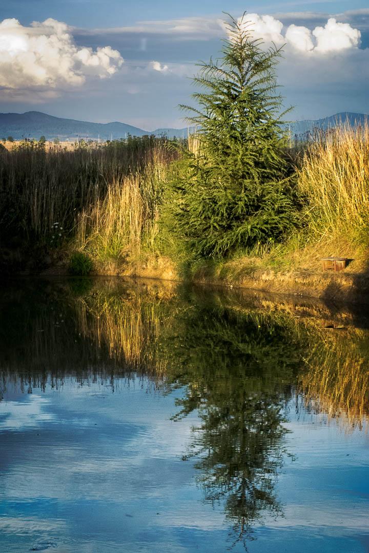Mountain pond by utak3r