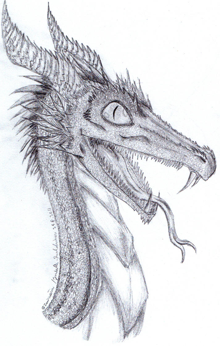 Dragon pencil sketch- by Zairieene on DeviantArt
