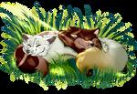 Sleeping Metron and Sivka