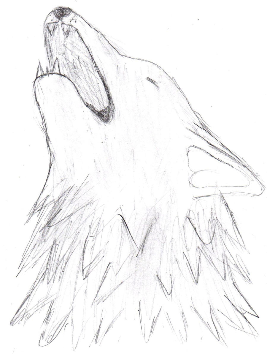 Simple howling wolf sketch - photo#26