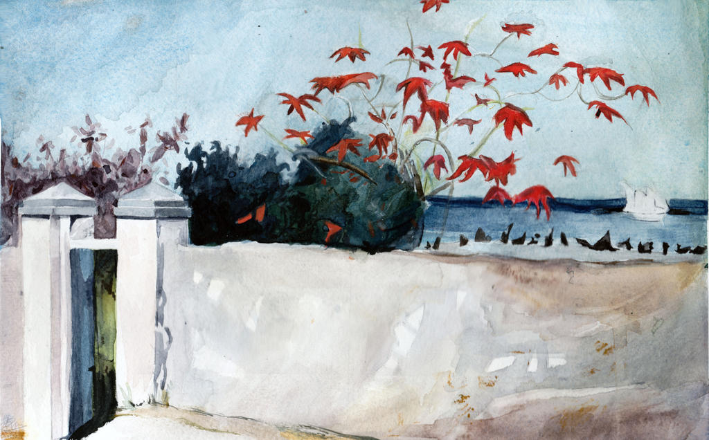 A Wall, Nassau. After Winslow Homer by sackofsquan