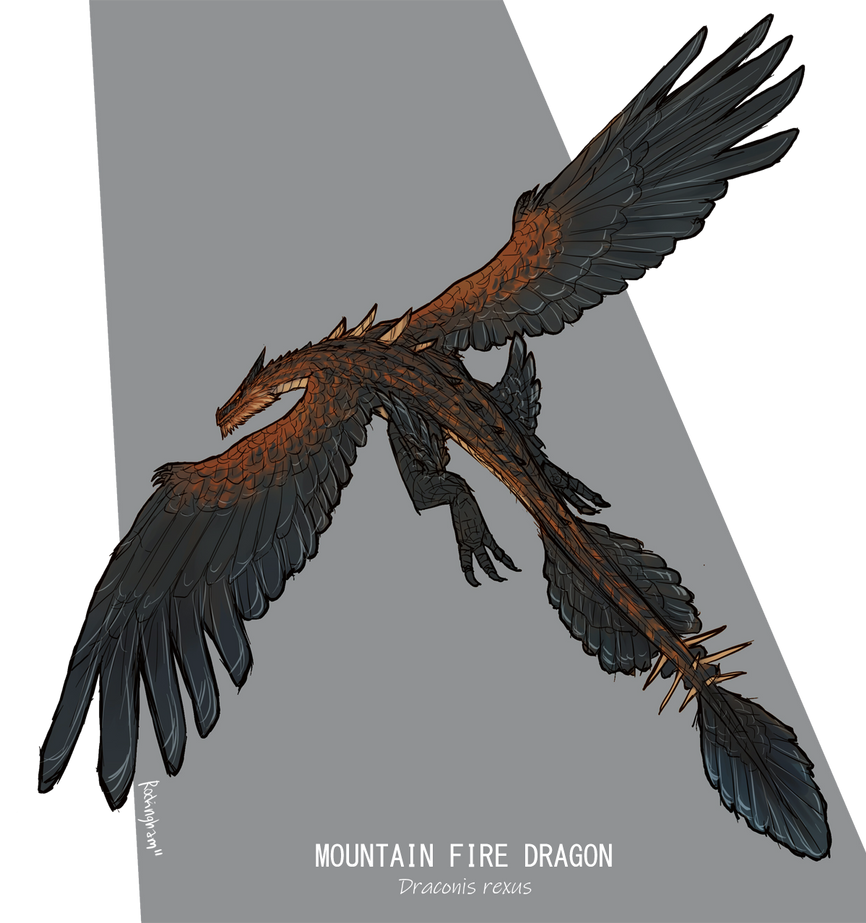 Mountain Fire Dragon