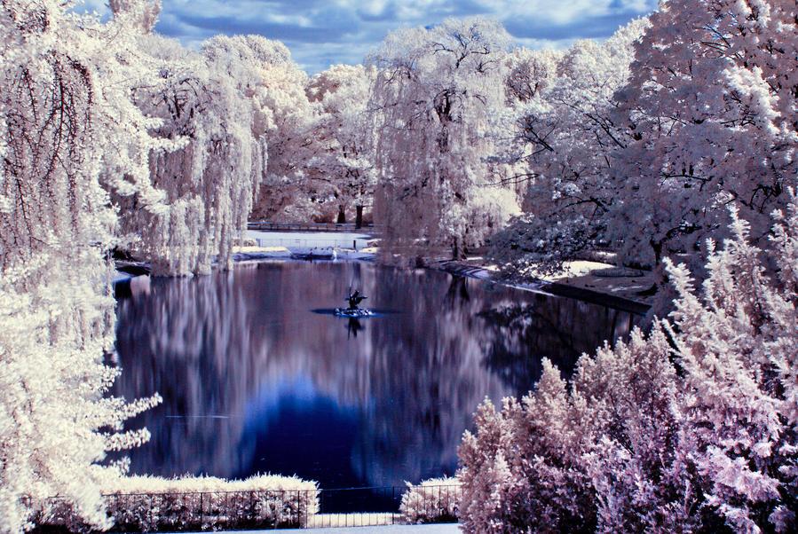 Saski Park Warsaw infrared by buyniasty